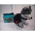 Rucksack für Hunde Gr. 2