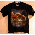 """T-Shirt mit Druck """"Isländer"""", Gr. 164"""
