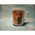 "Tasse ""Golden Retriver"""